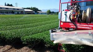 大分県土地改良事業団体連合会の皆さんと、土地改良区まわり、茶畑の管理風景