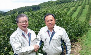 全国一の規模でカボス生産をしているハマノ果香園で、共に調査を進めます