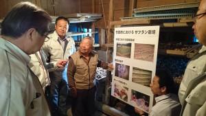 農林水産委員会の竹田調査、岩本地区のサフラン