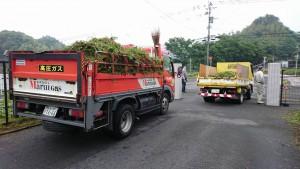 竹田小学校 PTAの作業グループ「むささび会」草刈り草の運搬