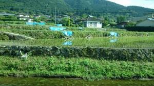 震災後の復旧状況を調査3