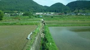 震災後の復旧状況を調査5