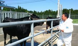久住の畜産研究部