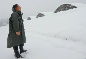 降雪の状況を確認2 大分県議会議員 土居昌弘