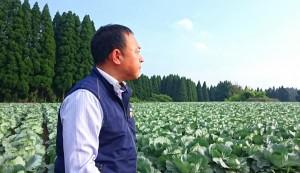 直入町のキャベツ畑にて 大分県議会議員 土居昌弘