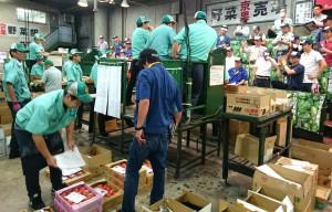 京都市中央卸売市場2 大分県議会議員 土居昌弘