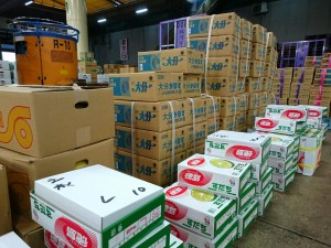 京都市中央卸売市場3 大分県議会議員 土居昌弘