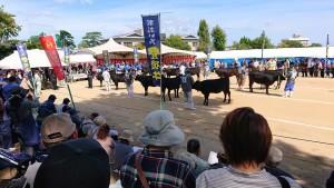 別府の大分県農林水産祭へ 大分県議会議員 土居昌弘